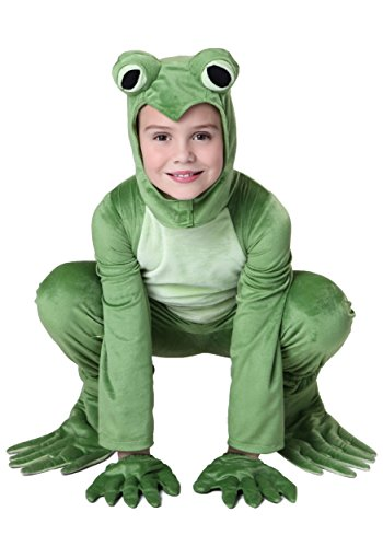 Cool Frog Costume for Kids